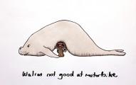 walrus_motorbike_shapeshftr_low